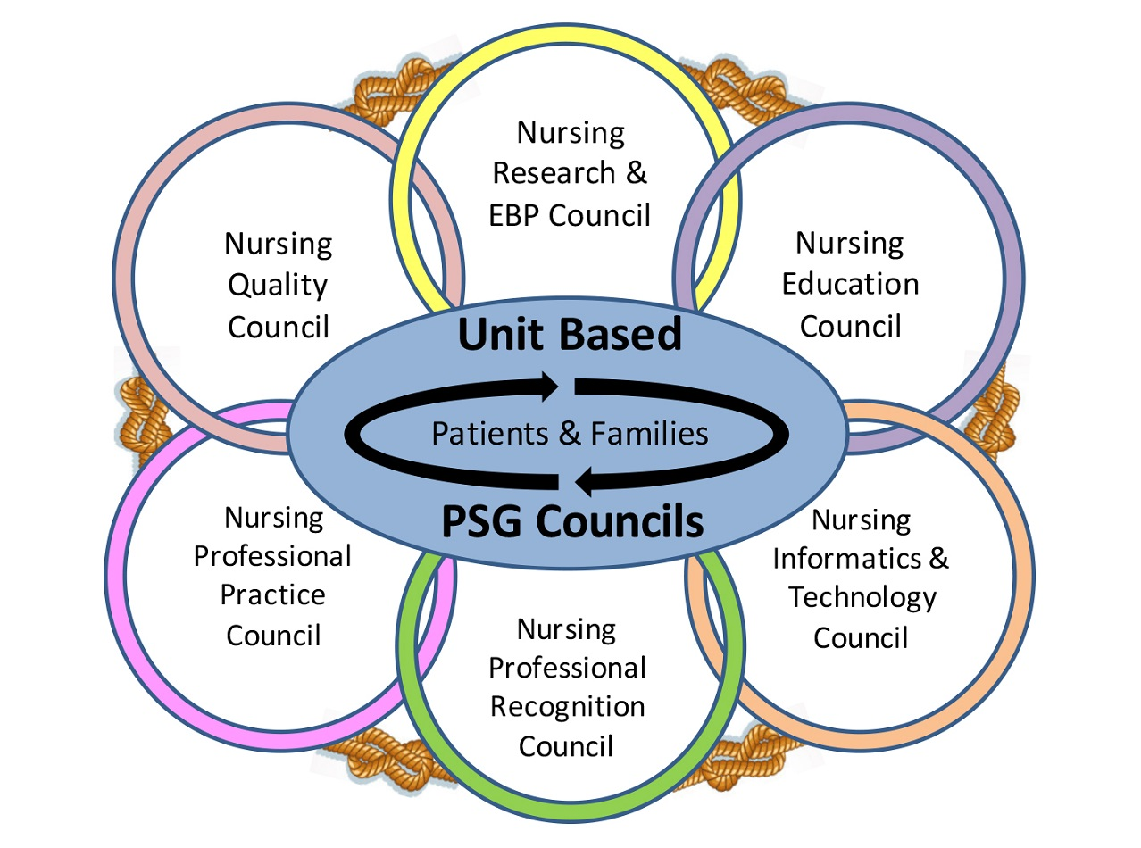 evidence based patient care becomes a Implementation safet net medical home initiative planning care for individual patients and whole populations implementation guide organied, evidence-based care.